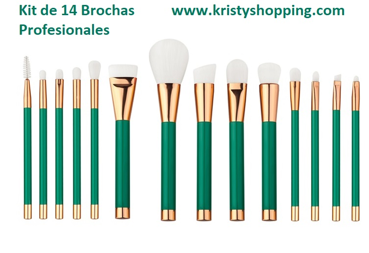 Brush Makeup 14 kit